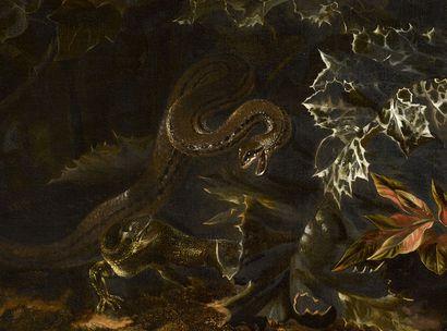 Marseus Van Schrieck - Chardons, écureuil, reptiles et insectes © Musée des beaux-arts de Quimper