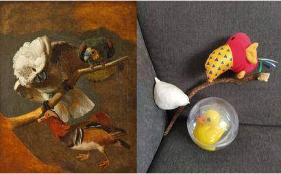 """""""Perroquet, cacatoes et canard"""" attribué à Jacques Barraband revisité © FR"""